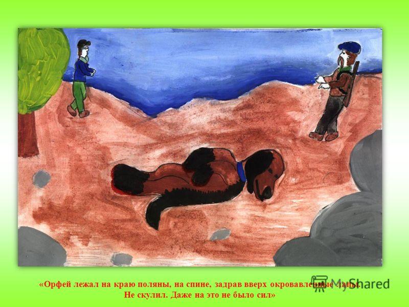 «Орфей лежал на краю поляны, на спине, задрав вверх окровавленные лапы. Не скулил. Даже на это не было сил»