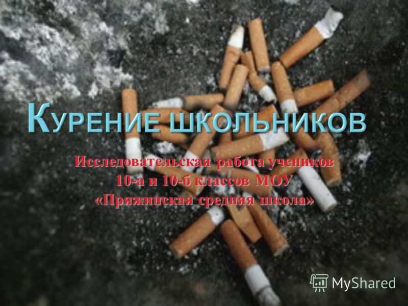 Исследовательская работа учеников 10- а и 10- б классов МОУ « Пряжинская средняя школа »