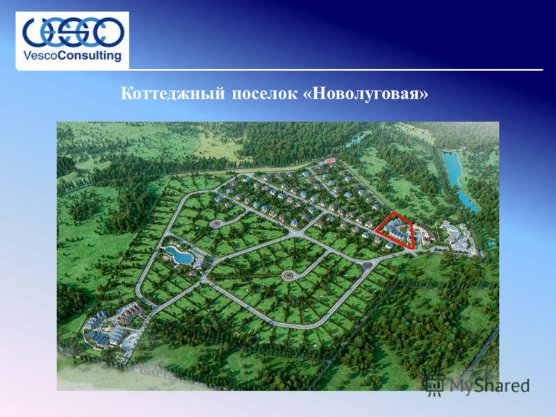 Коттеджный поселок «Новолуговая»