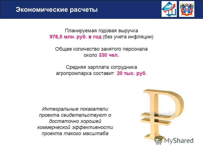 Планируемая годовая выручка 976,5 млн. руб. в год (без учета инфляции) Общее количество занятого персонала около 330 чел. Средняя зарплата сотрудника агропромпарка составит 20 тыс. руб. Экономические расчеты Интегральные показатели проекта свидетельс