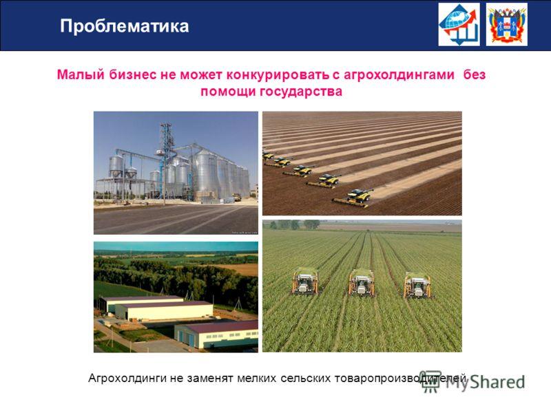 Малый бизнес не может конкурировать с агрохолдингами без помощи государства Агрохолдинги не заменят мелких сельских товаропроизводителей Проблематика