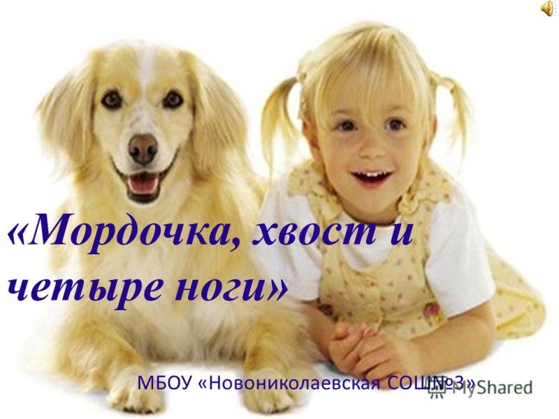 «Мордочка, хвост и четыре ноги» МБОУ «Новониколаевская СОШ3»
