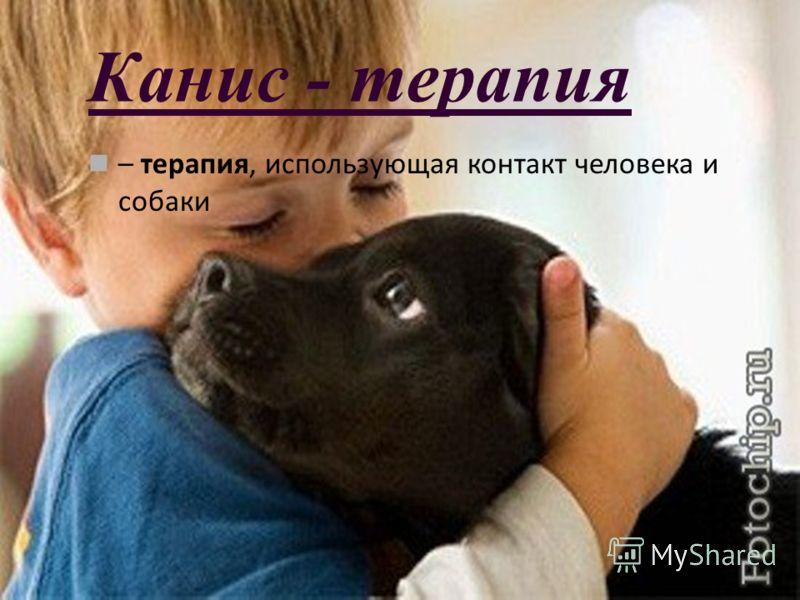 Канис - терапия – терапия, использующая контакт человека и собаки