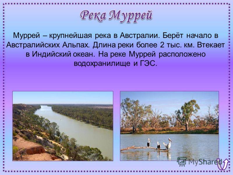 Муррей – крупнейшая река в Австралии. Берёт начало в Австралийских Альпах. Длина реки более 2 тыс. км. Втекает в Индийский океан. На реке Муррей расположено водохранилище и ГЭС.