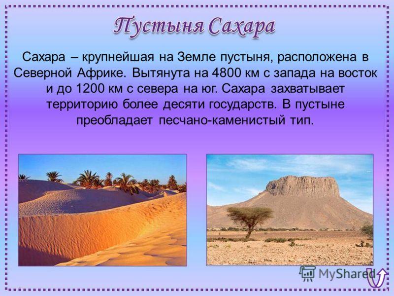 Сахара – крупнейшая на Земле пустыня, расположена в Северной Африке. Вытянута на 4800 км с запада на восток и до 1200 км с севера на юг. Сахара захватывает территорию более десяти государств. В пустыне преобладает песчано-каменистый тип.