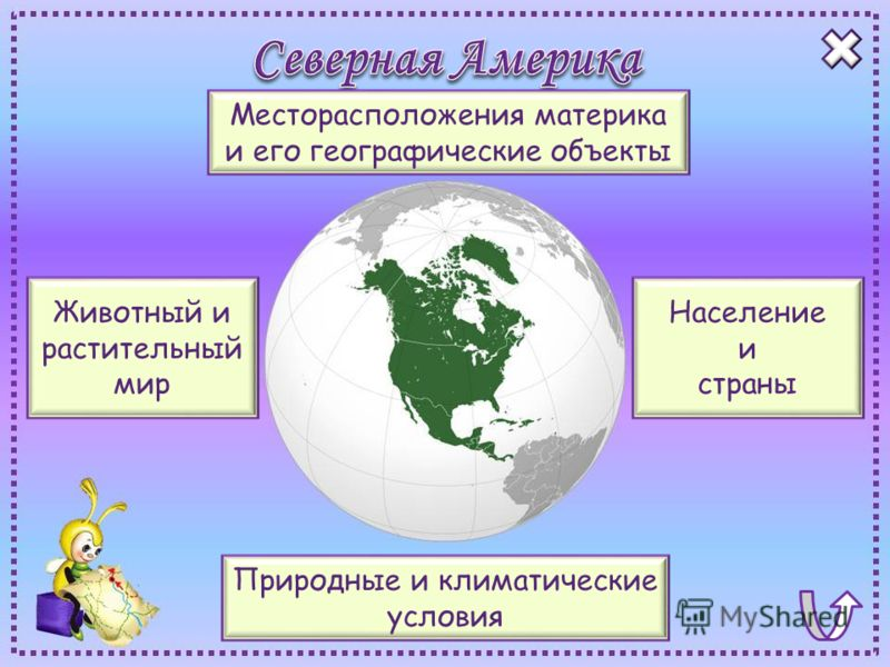 Месторасположения материка и его географические объекты Природные и климатические условия Население и страны Животный и растительный мир