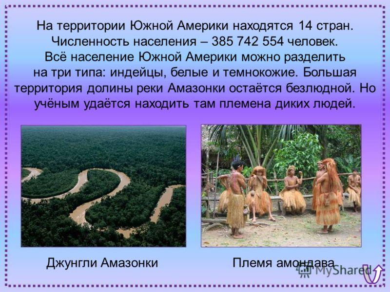 Джунгли АмазонкиПлемя амондава На территории Южной Америки находятся 14 стран. Численность населения – 385 742 554 человек. Всё население Южной Америки можно разделить на три типа: индейцы, белые и темнокожие. Большая территория долины реки Амазонки