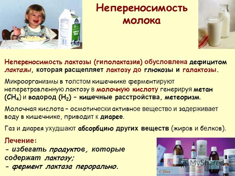 Непереносим о сть лактоз ы (г и полактаз и я) обусловлена деф и цитом лактаз ы, которая р асщепляет лактозу до глюкоз ы и галактоз ы. М и кроорган и зм ы в то лстом кишечник е фермент ируют неперетравлен н у ю лактозу в молочн ую кислот у генер ир у