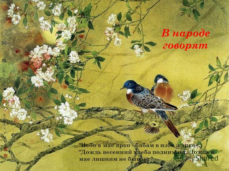В народе говорят небо в мае ярко