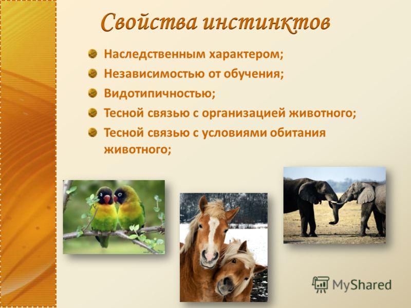 Наследственным характером; Независимостью от обучения; Видотипичностью; Тесной связью с организацией животного; Тесной связью с условиями обитания животного;