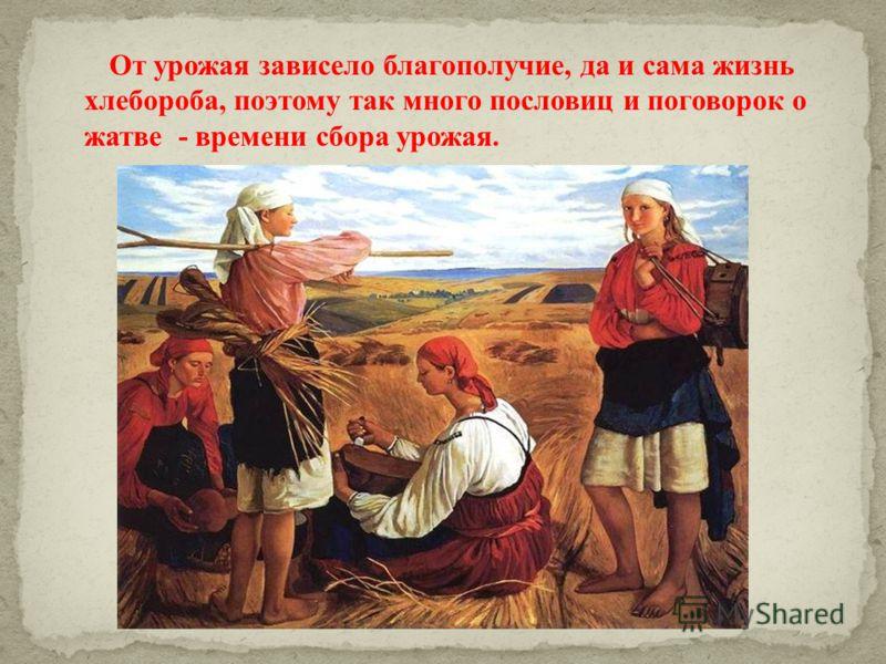 От урожая зависело благополучие, да и сама жизнь хлебороба, поэтому так много пословиц и поговорок о жатве - времени сбора урожая.