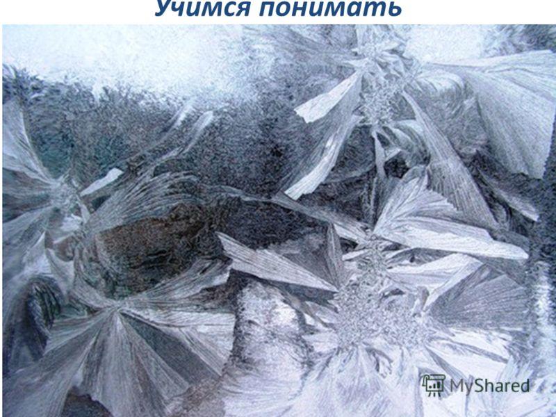 Учимся понимать художественный текст… Поразмышляйте! Стихотворение И. А. Бунина называется Хризантемы. Оно о цветах? На окне, серебряном от инея, За ночь хризантемы расцвели.