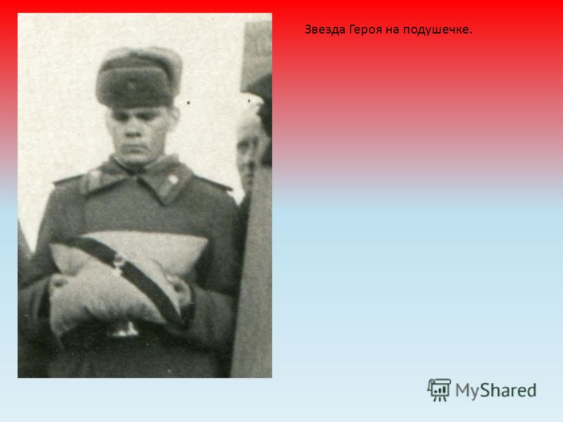 Звезда Героя на подушечке.