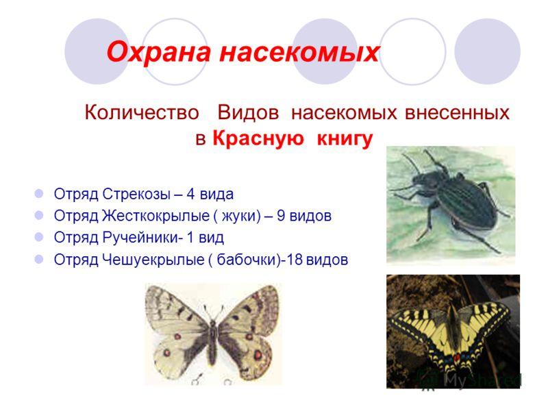 Охрана насекомых Количество Видов насекомых внесенных в Красную книгу Отряд Стрекозы – 4 вида Отряд Жесткокрылые ( жуки) – 9 видов Отряд Ручейники- 1 вид Отряд Чешуекрылые ( бабочки)-18 видов