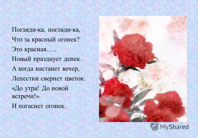 Погляди-ка, погляди-ка, Что за красный огонек? Это красная….. Новый празднует денек. А когда настанет вечер, Лепестки свернет цветок. «До утра! До новой встречи!» И погаснет огонек.
