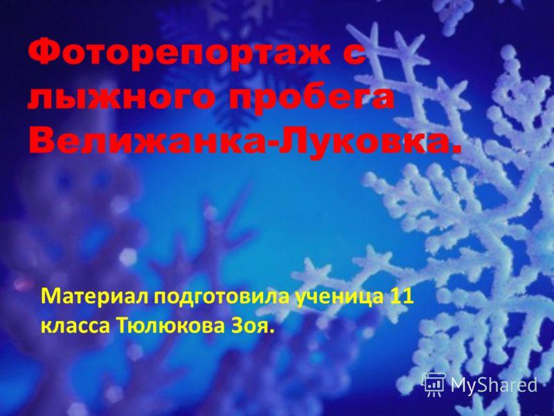 Фоторепортаж с лыжного пробега Велижанка-Луковка. Материал подготовила ученица 11 класса Тюлюкова Зоя.