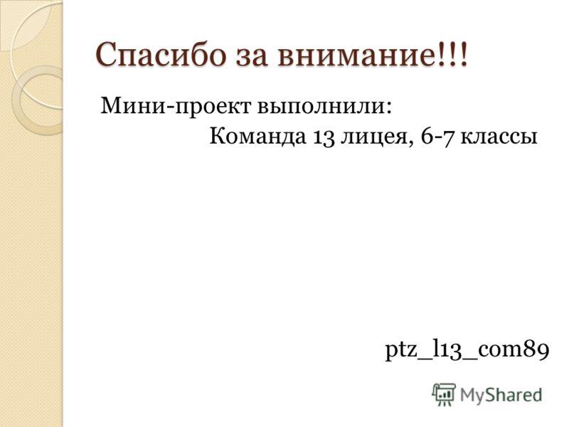Спасибо за внимание!!! Мини-проект выполнили: Команда 13 лицея, 6-7 классы ptz_l13_com89
