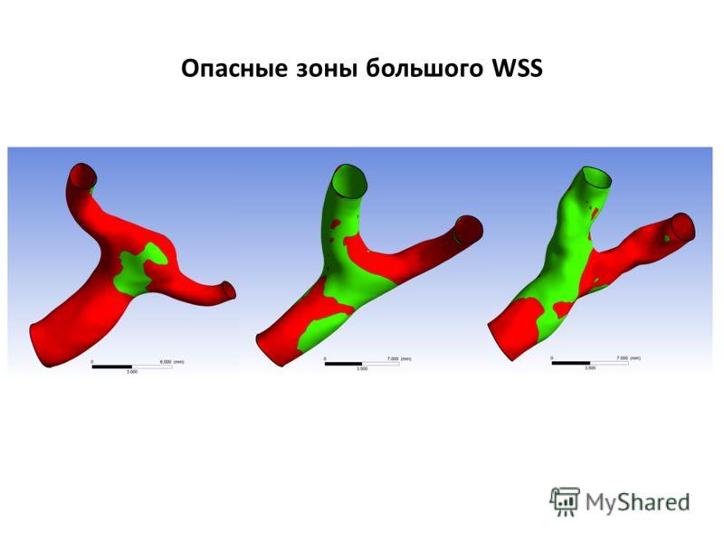 Опасные зоны большого WSS