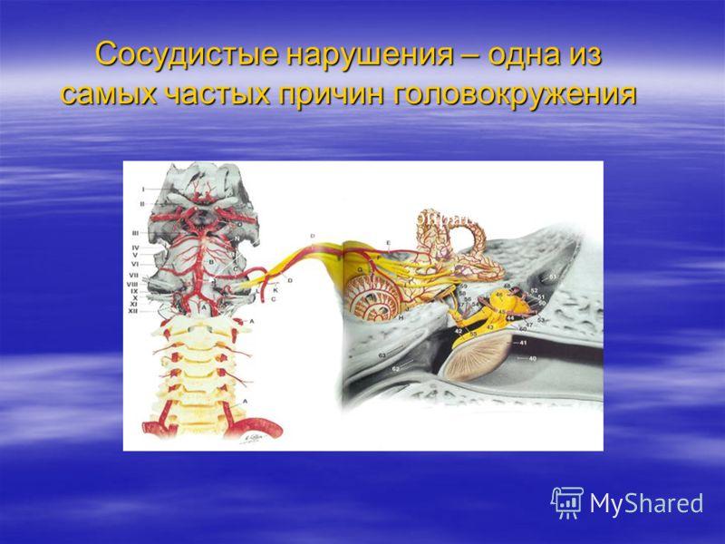 Базилярная артерия Вертебральная артерия Артерия лабиринта Сосудистые нарушения – одна из самых частых причин головокружения