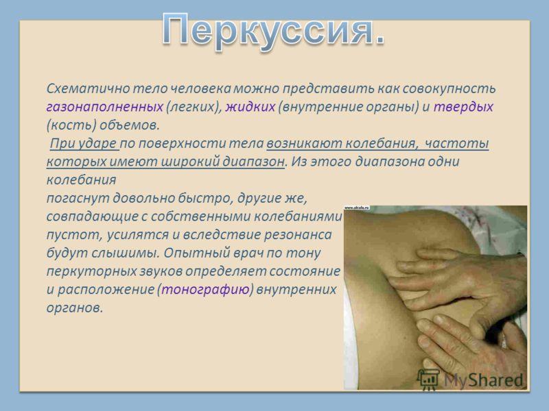 Схематично тело человека можно представить как совокупность газонаполненных (легких), жидких (внутренние органы) и твердых (кость) объемов. При ударе по поверхности тела возникают колебания, частоты которых имеют широкий диапазон. Из этого диапазона