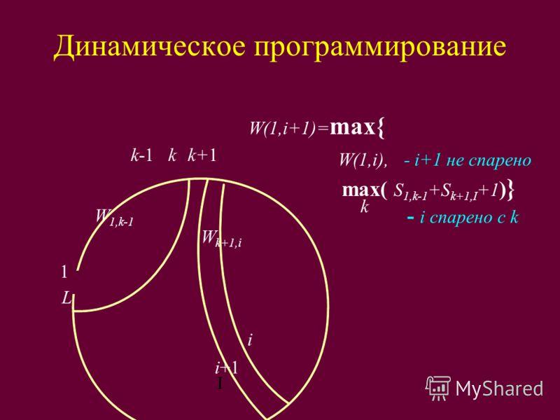 Динамическое программирование I i+1 i k-1kk+1 W k+1,i W 1,k-1 W(1,i+1)= max{ W(1,i), - i+1 не спарено max( S 1,k-1 +S k+1,I +1 ) } - i спарено с k k L 1