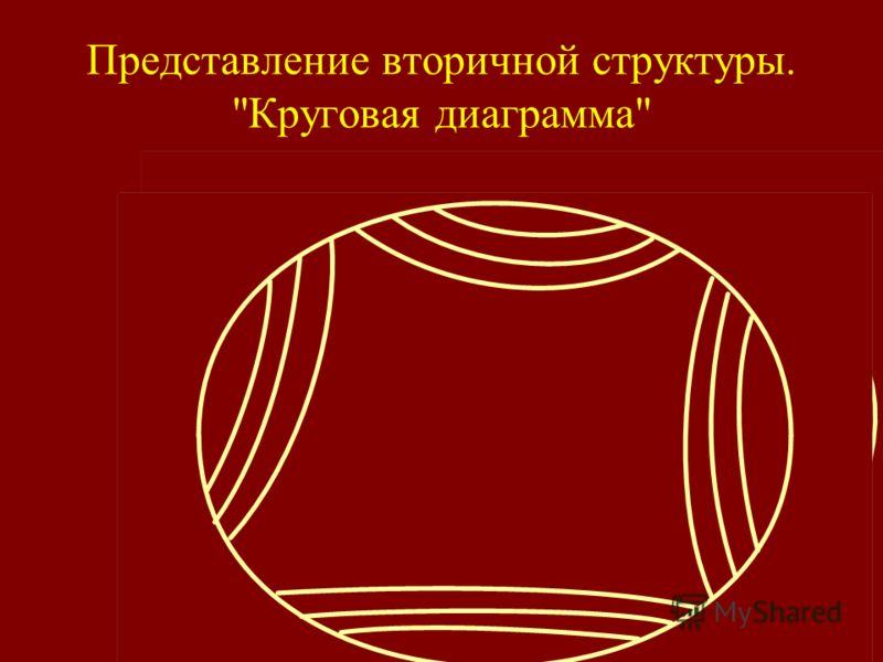 Представление вторичной структуры. Круговая диаграмма
