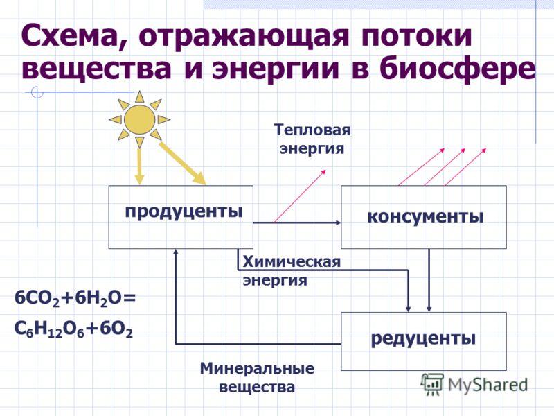Схема, отражающая потоки вещества и энергии в биосфере Минеральные вещества продуценты консументы редуценты Тепловая энергия Химическая энергия 6СО 2 +6Н 2 О= С 6 Н 12 О 6 +6О 2