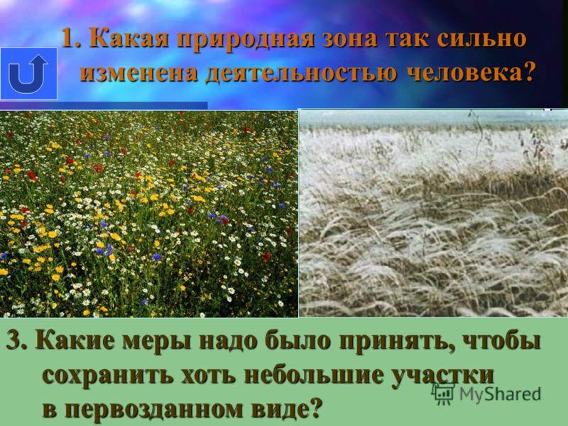 Примеры экологических катастроф Разрушенный 4 энергоблок Чернобыльской АЭС Саркофаг над 4 энергоблоком Чернобыльской АЭС Танкер «Престиж» -разлив нефти Кит, выбросившийся на берег у побережья Северного моря из-за загрязнения воды. Горящий террикон