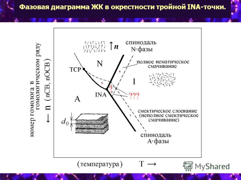 Фазовая диаграмма ЖК в окрестности тройной INA-точки.