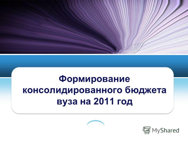Формирование консолидированного бюджета вуза на 2011 год