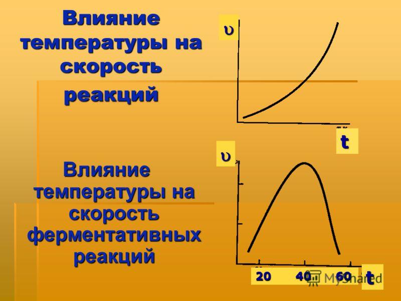 Влияние температуры на скорость реакций Влияние температуры на скорость ферментативных реакций t t 204060