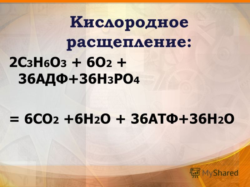 Кислородное расщепление: 2С 3 Н 6 О 3 + 6О 2 + 36АДФ+36Н 3 РО 4 = 6СО 2 +6Н 2 О + 36АТФ+36H 2 О