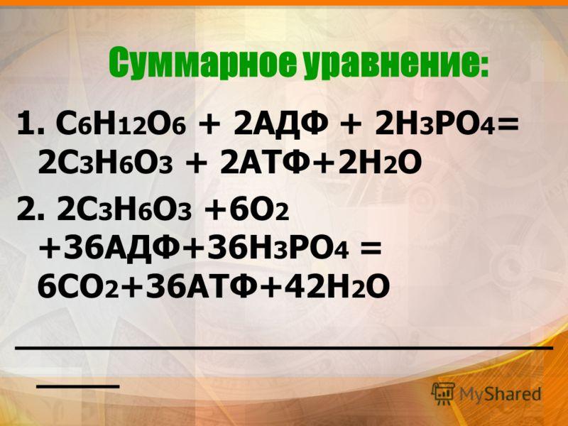 Суммарное уравнение: 1. С 6 Н 12 О 6 + 2АДФ + 2Н 3 РО 4 = 2С 3 Н 6 О 3 + 2АТФ+2Н 2 О 2. 2С 3 Н 6 О 3 +6О 2 +36АДФ+36Н 3 РО 4 = 6СО 2 +36АТФ+42Н 2 О __________________________ ____
