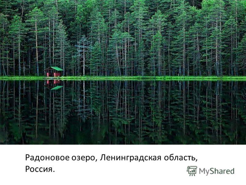 Радоновое озеро, Ленинградская область, Россия.
