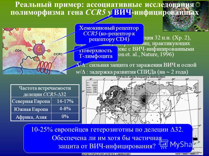 Реальный пример: ассоциативные исследования полиморфизма гена CCR5 у ВИЧ-инфицированных Мутация CCR5- 32 : делеция 32 п.н. (Хр. 2), обнаружена у здоровых лиц, практикующих незащищенный секс с ВИЧ-инфицированными (N. Samson et. al., Nature, 1996) Пове
