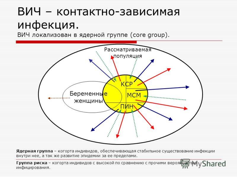 ВИЧ – контактно-зависимая инфекция. ВИЧ локализован в ядерной группе (core group). ПИН МСМ КСР Беременные женщины Рассматриваемая популяция Ядерная группа – когорта индивидов, обеспечивающая стабильное существование инфекции внутри нее, а так же разв