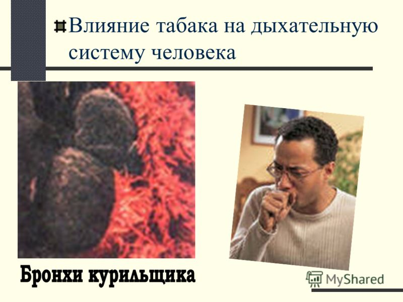Влияние табака на дыхательную систему человека