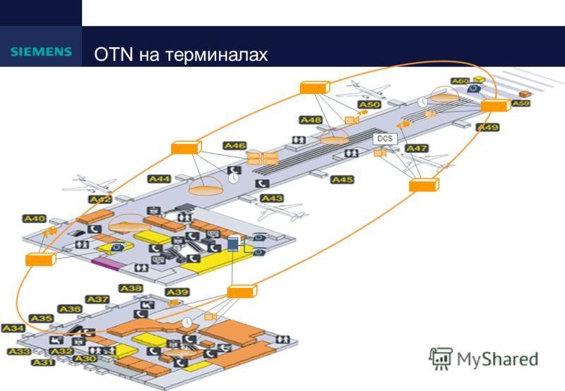 OTN на терминалах DCS