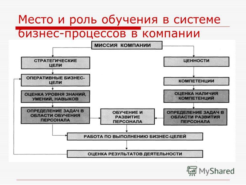 Место и роль обучения в системе бизнес-процессов в компании