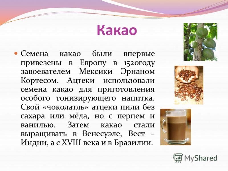 Какао Семена какао были впервые привезены в Европу в 1520году завоевателем Мексики Эрнаном Кортесом. Ацтеки использовали семена какао для приготовления особого тонизирующего напитка. Свой «чоколатль» атцеки пили без сахара или мёда, но с перцем и ван