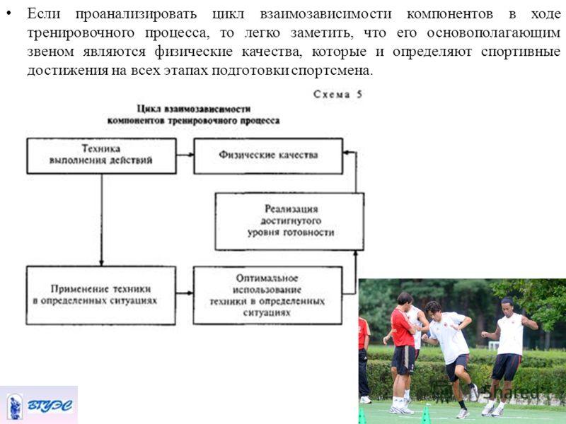 Если проанализировать цикл взаимозависимости компонентов в ходе тренировочного процесса, то легко заметить, что его основополагающим звеном являются физические качества, которые и определяют спортивные достижения на всех этапах подготовки спортсмена.