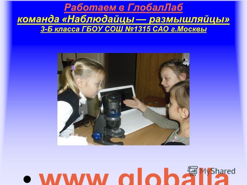 Работаем в ГлобалЛаб команда «Наблюдайцы размышляйцы» 3-Б класса ГБОУ СОШ 1315 САО г.Москвы www.globalla b.ru
