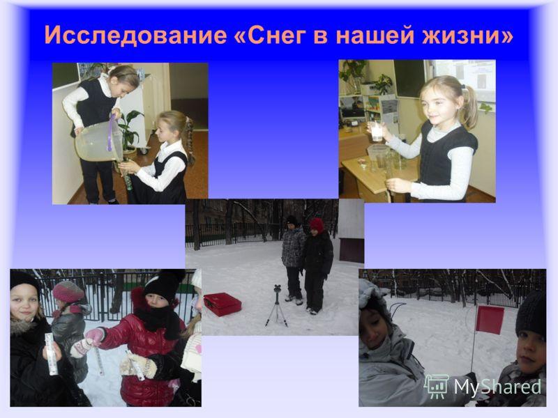 Исследование «Снег в нашей жизни»