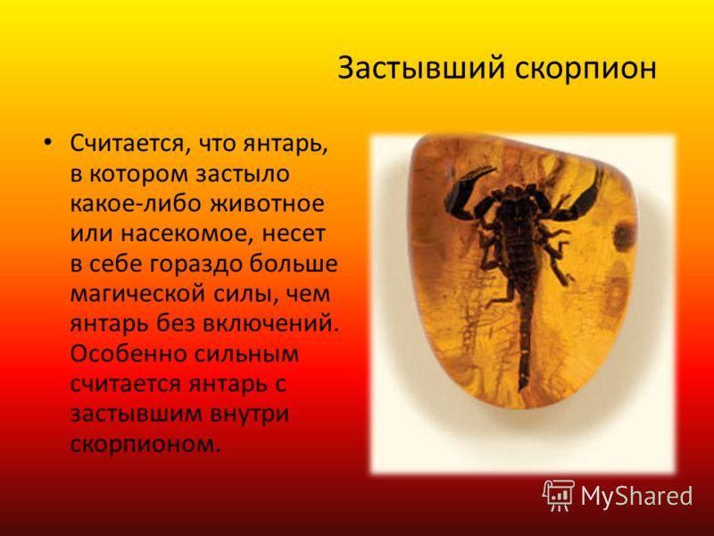 Застывший скорпион Считается, что янтарь, в котором застыло какое-либо животное или насекомое, несет в себе гораздо больше магической силы, чем янтарь без включений. Особенно сильным считается янтарь с застывшим внутри скорпионом.