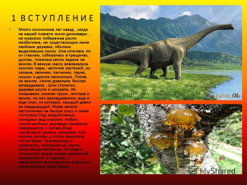 1 В С Т У П Л Е Н И Е Много миллионов лет назад, когда на нашей планете жили динозавры, на морском побережье росли необычные, не существующие ныне хвойные деревья, обильно выделявшие смолу.Она сочилась по их стволам, собиралась в трещинах, дуплах, тя