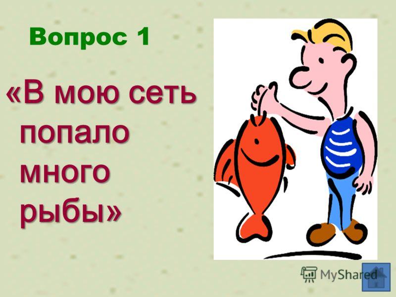 Вопрос 1 «В мою сеть попало много рыбы»