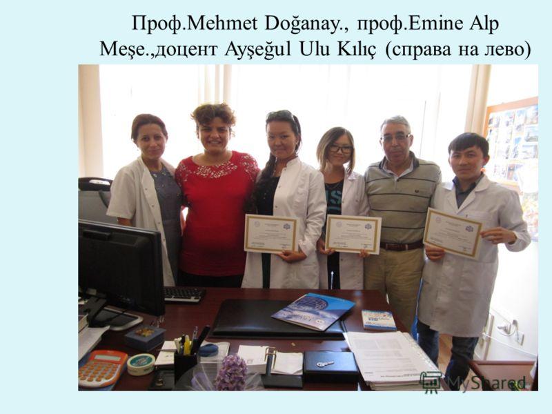 Проф.Mehmet Doğanay., проф.Emine Alp Meşe.,доцент Ayşeğul Ulu Kılıç (справа на лево)