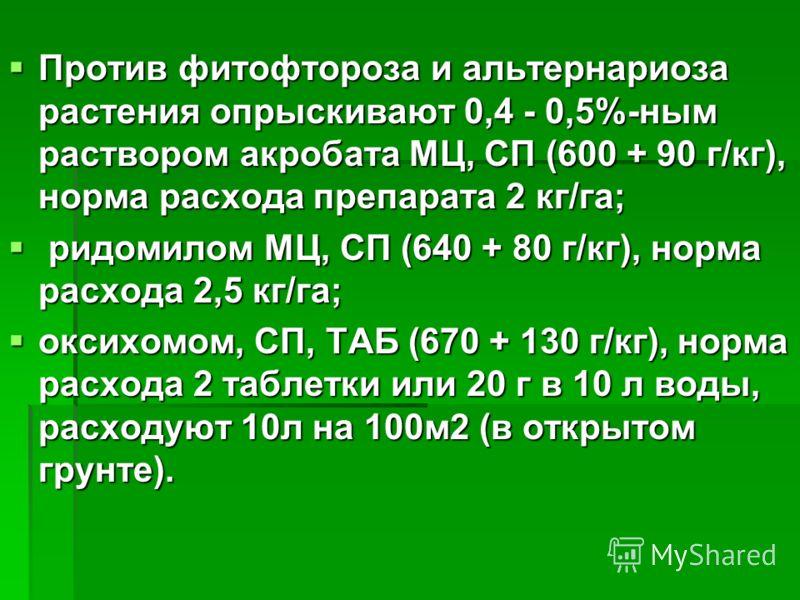 Против фитофтороза и альтернариоза растения опрыскивают 0,4 - 0,5%-ным раствором акробата МЦ, СП (600 + 90 г/кг), норма расхода препарата 2 кг/га; Против фитофтороза и альтернариоза растения опрыскивают 0,4 - 0,5%-ным раствором акробата МЦ, СП (600 +