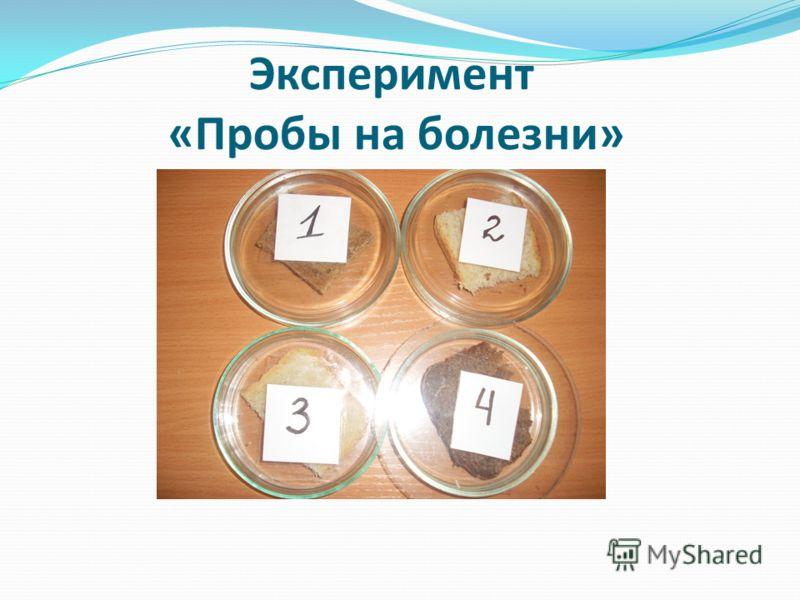 Эксперимент «Пробы на болезни»