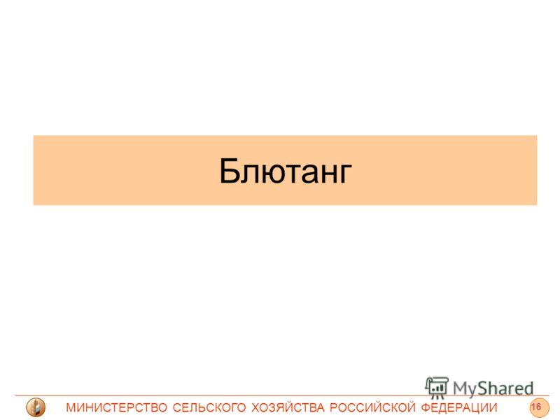 МИНИСТЕРСТВО СЕЛЬСКОГО ХОЗЯЙСТВА РОССИЙСКОЙ ФЕДЕРАЦИИ Блютанг 16